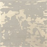 Wallcovering Clear Glass